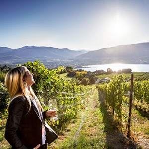 Delegate enjoys wine and sun during an off-site in Penticton